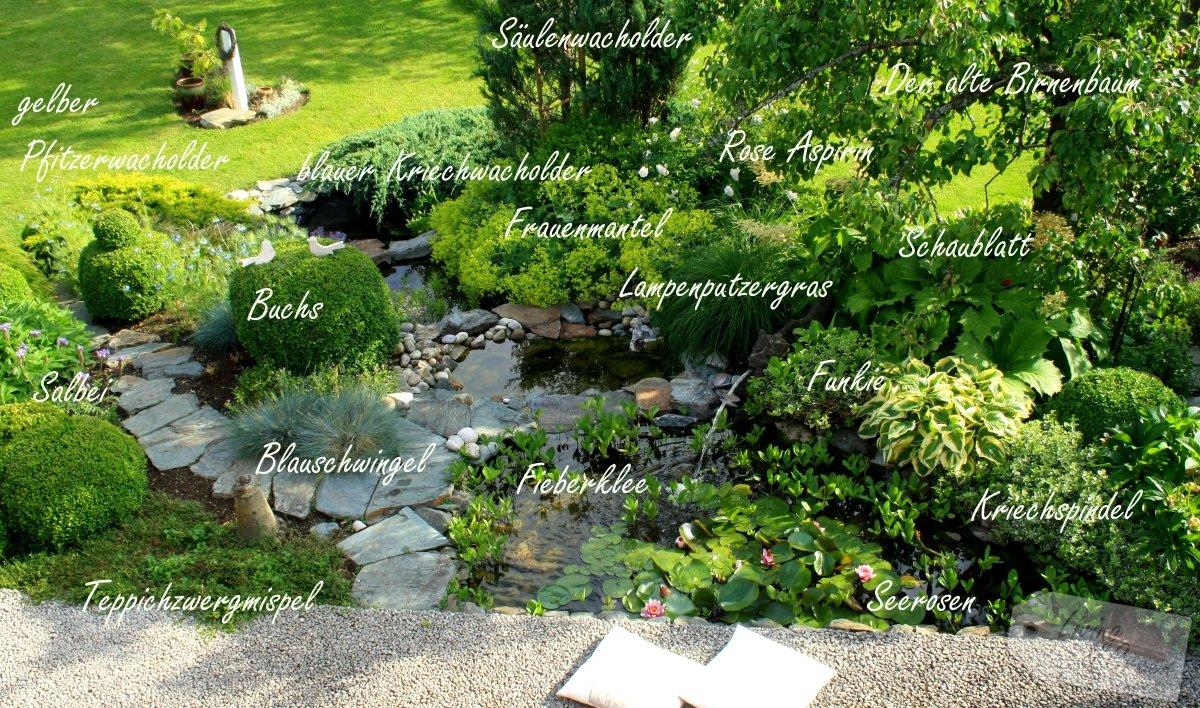 Gartenteich sanierung und erweiterung swiss for Gartenteiche bilder