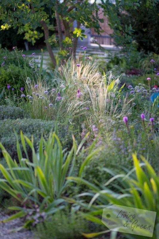 Die Geheime Leidenschaft Der Renate Waas Living Green