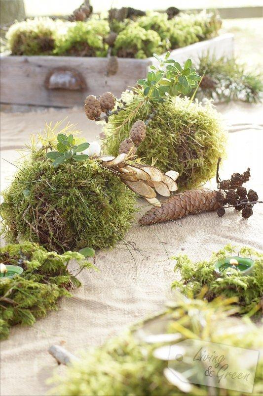 tischlein deck dich mit moos living green. Black Bedroom Furniture Sets. Home Design Ideas