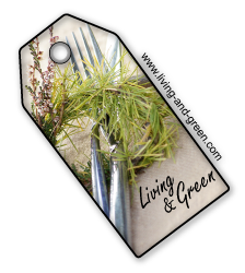 Living & Green cook the taste of nature