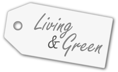 Living & Green have fun & be creative